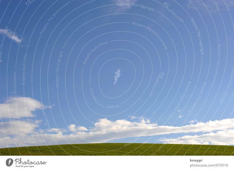 350 l Freiraum für... Umwelt Natur Landschaft Luft Himmel Wolken Horizont Sonnenlicht Frühling Sommer Schönes Wetter Wärme Pflanze Gras Blatt Grünpflanze Wiese