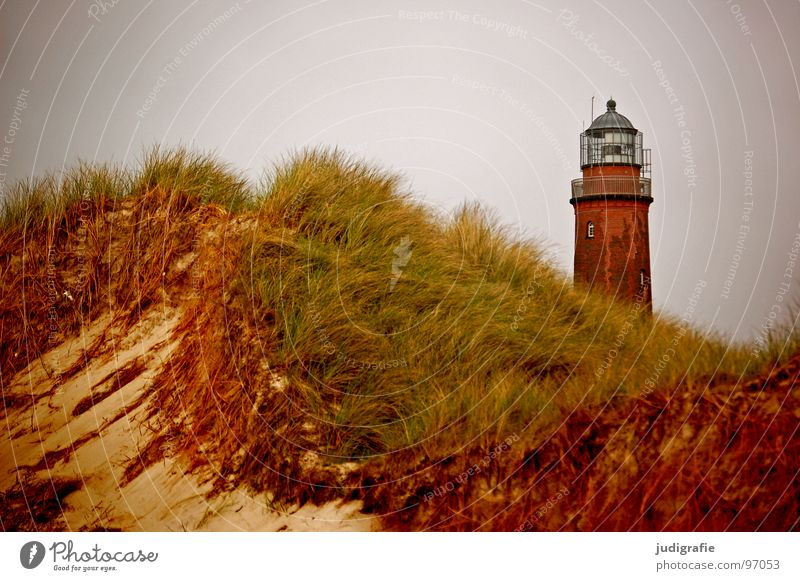 Leuchtturm See Meer Strand Küste Gras Navigation Orientierung Licht salzig Ferien & Urlaub & Reisen Seezeichen Fischland-Darß-Zingst Prerow Weststrand Luft