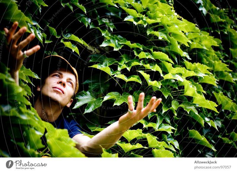 Gärtners Delight Natur Mann grün Hand Pflanze Blatt Kraft maskulin Wachstum Kraft Hoffnung Wunsch Urwald Gärtner bewachsen gedeihen