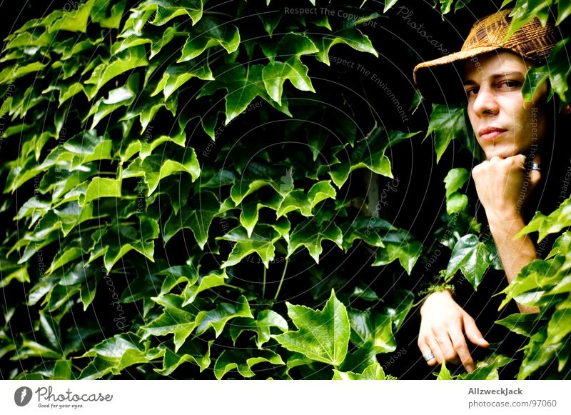 Gärtners Delight II Mann Natur Hand grün Pflanze Blatt Denken maskulin Hoffnung Wachstum Wunsch Konzentration Urwald ernst gedeihen