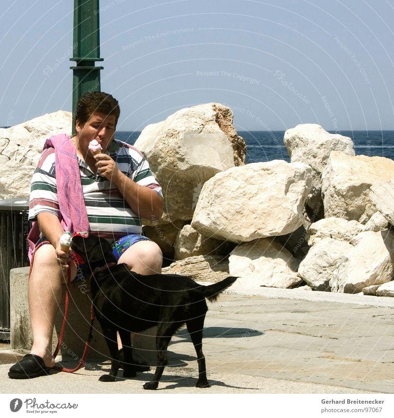 Weightwatcher`s Watchdog Hund Mann Physik lutschen Meer Teilung kühlen Kühlung Sommer Süßwaren Eis Wärme Essen teilen