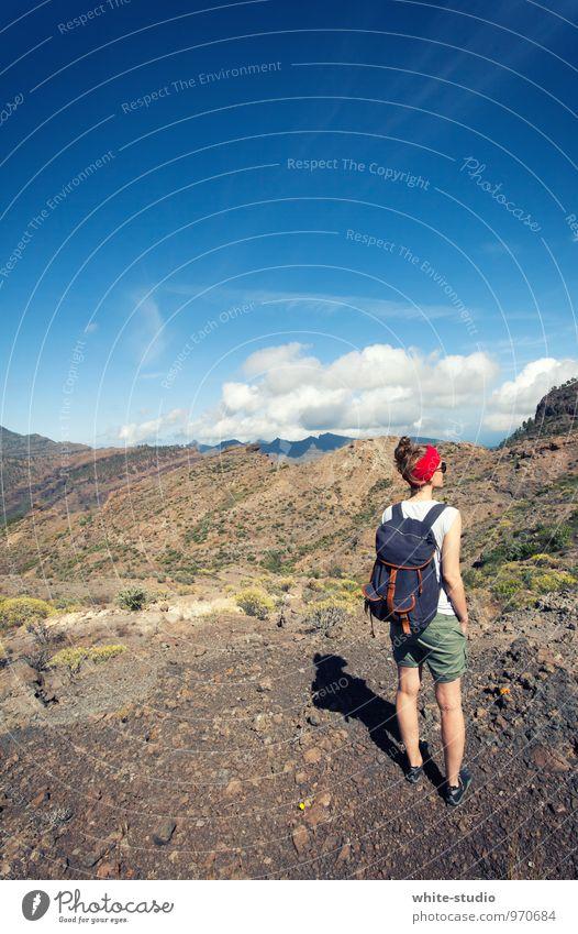 Wandetag feminin Junge Frau Jugendliche Erwachsene 18-30 Jahre Hügel Felsen Alpen Berge u. Gebirge Gipfel wandern Bergsteigen Ausflug Wandertag Spaziergang