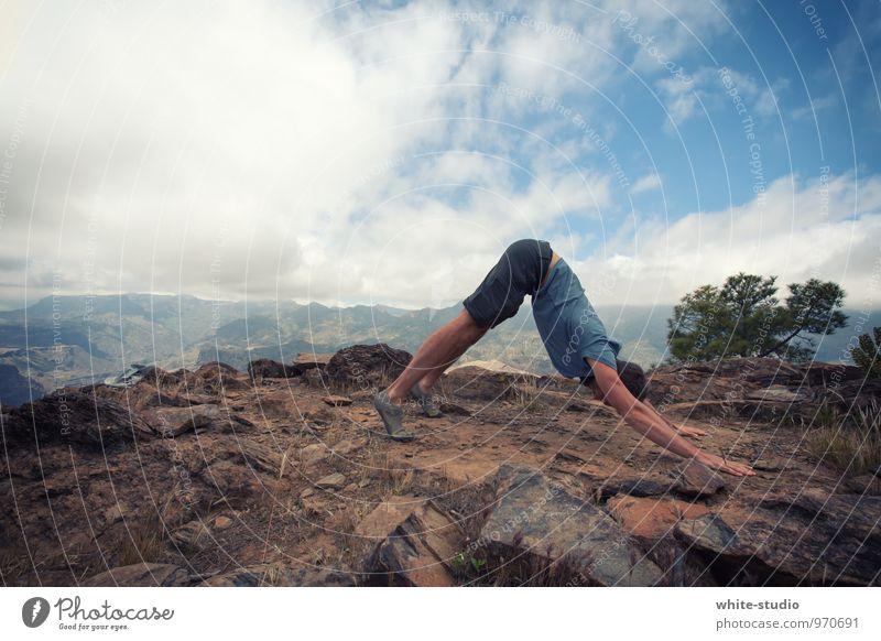 Outdoor Yoga maskulin Mann Erwachsene Körper 18-30 Jahre Jugendliche Sport sportlich Yogalehrer Lehrer Außenaufnahme Hund Berge u. Gebirge Kopf Sportler
