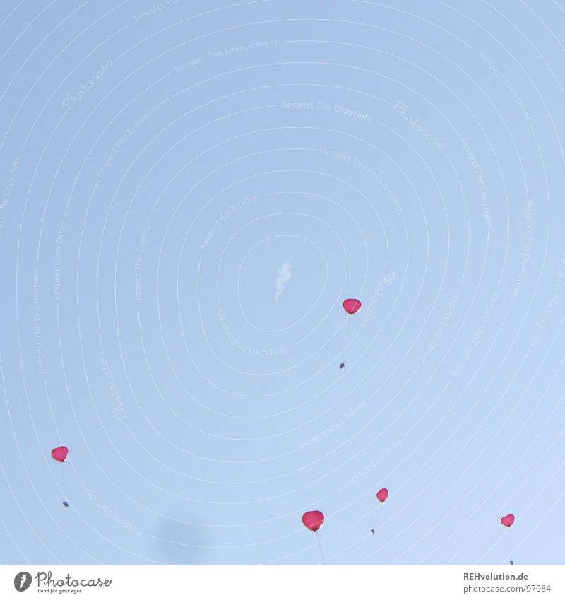 lasst die herzen doch los! loslassen Schweben aufsteigen Luft Luftpost Romantik herzbewegend himmlisch Luftballon Liebe Sommer Himmel blau Herz fliegen