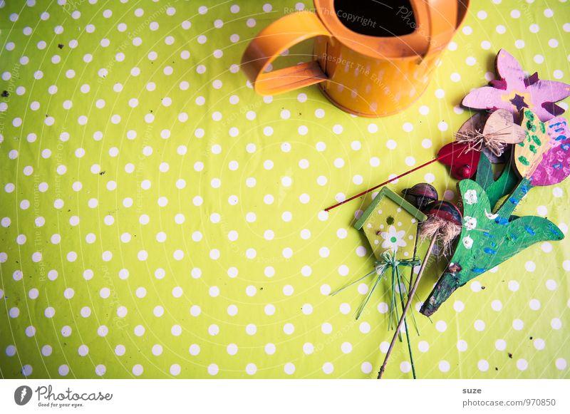 Der Sommer macht Platz Freizeit & Hobby Basteln Wohnung Garten Dekoration & Verzierung Gartenarbeit Blume Balkon Gießkanne schön Kitsch grün Kreativität