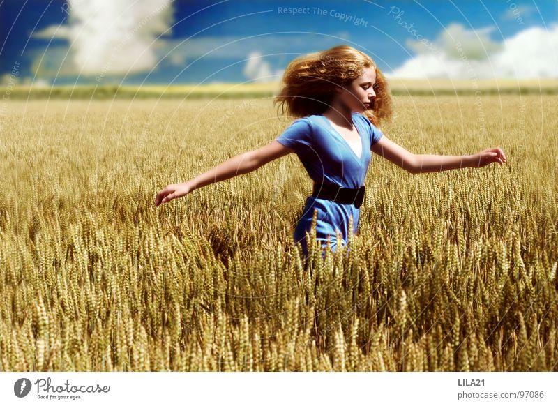 Champ de liberté Feld Fröhlichkeit Sommer gelb Gemälde ökologisch Freude blau Getreide Himmel Natur rennen Glück Freiheit Wetter Arme Bioprodukte