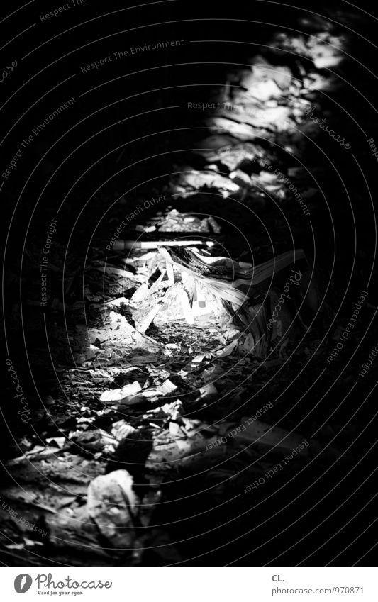 papier Papier Papiermüll Müll alt dreckig dunkel Verfall Vergangenheit Vergänglichkeit Zerstörung Schwarzweißfoto Menschenleer Tag Licht Schatten Kontrast