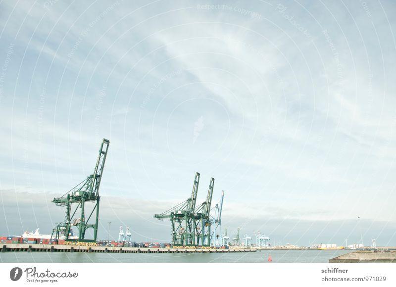 Belgische Giraffenherde Technik & Technologie Industrie Landschaft Schifffahrt Hafen Container grau Holzgiraffe Containerterminal Containerverladung