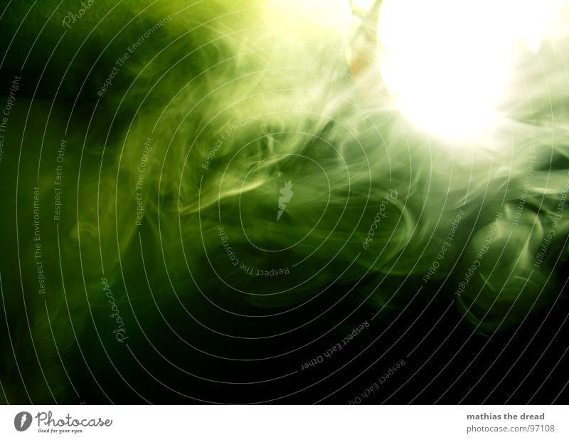 Rauch weiß grün schön dunkel Bewegung Gras Lampe hell Nebel geschlossen Brand Rauchen Rauch Zigarette grell