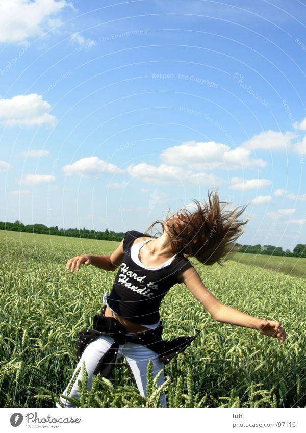 WOW; was kommt da von oben?! Wolken himmelblau Tier Insekt abrupt wo Feld grün Weizen groß mehrfarbig erschrecken UFO Untertasse drehen Schwung Ferne Himmel
