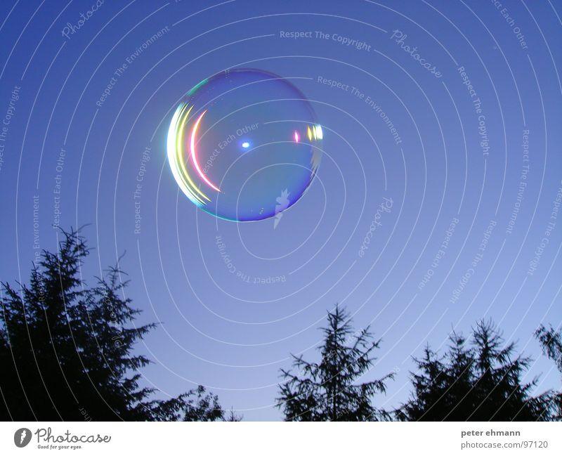 Seifenblase rund Baum Tanne Nacht Spielen Luft Schweben Reflexion & Spiegelung UFO Freizeit & Hobby Kugel Blase Himmel blasen fliegen blau Blue bubble flying