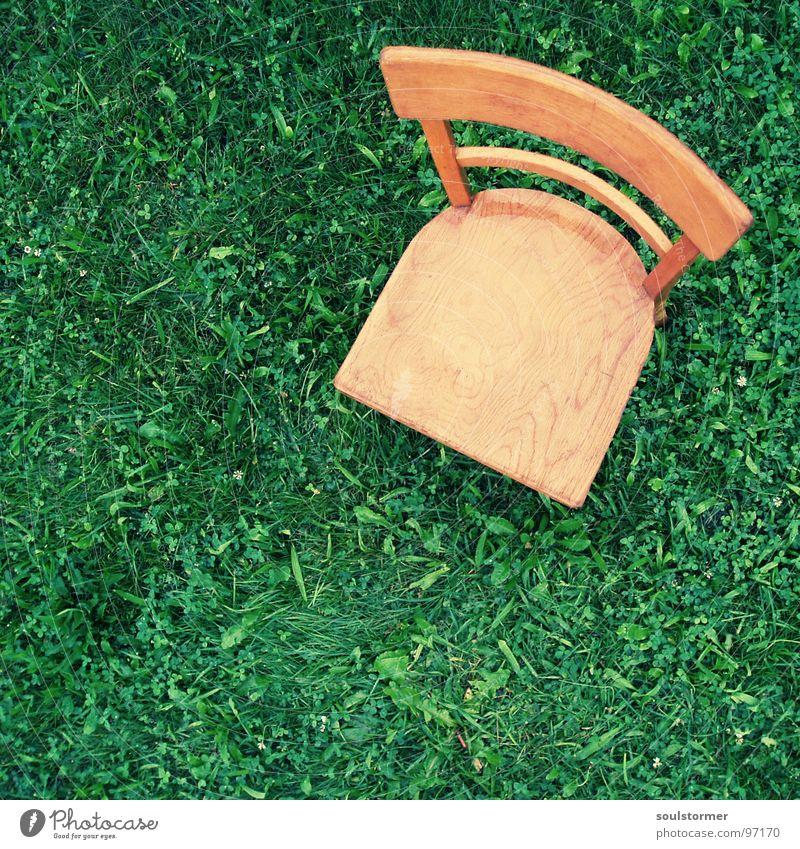 Sitzplatz Wiese Sitzgelegenheit Holz nass kalt Einsamkeit ruhig Vogelperspektive Blatt grün braun hellbraun dunkelgrün Verzweiflung Erholung Möbel Wetter Stuhl