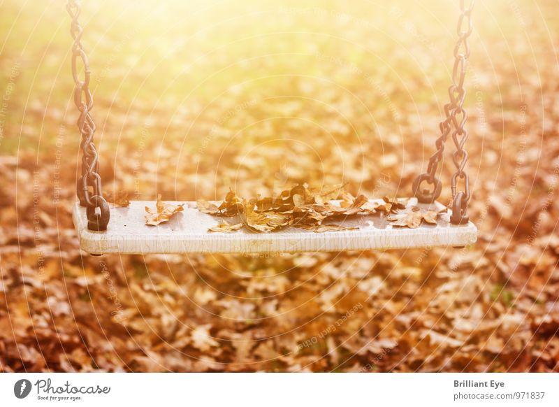Verlassene Schaukel in der Herbstsonne Natur Einsamkeit Blatt gelb Traurigkeit Gefühle Stimmung Park Freizeit & Hobby Wind Kindheit Armut Vergänglichkeit