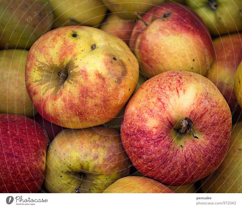lagerapfel Gesunde Ernährung Herbst Gesundheit Garten Frucht authentisch einfach Apfel Duft Lager Vorrat Wintervorrat