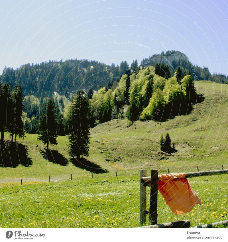 alpenduft Natur blau grün Sommer Farbe Wald Landschaft Wiese Berge u. Gebirge Gras Luft orange wandern Alpen Hemd Zaun