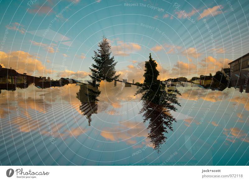 mit der Linie zum Sonnenuntergang harmonisch Schönes Wetter Tanne fantastisch lang Wärme Design Horizont Inspiration Surrealismus Irritation Doppelbelichtung