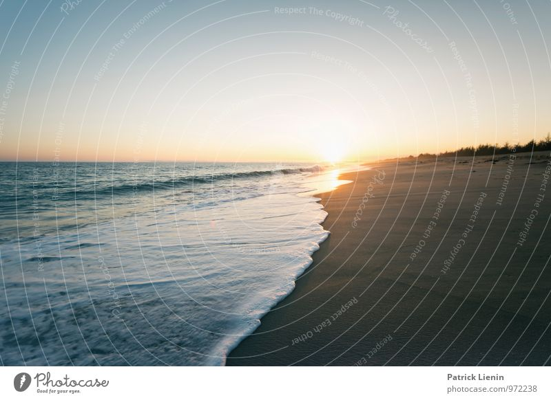 East Beach harmonisch Wohlgefühl Zufriedenheit Sinnesorgane Erholung Ferien & Urlaub & Reisen Ausflug Abenteuer Ferne Freiheit Sommer Sommerurlaub Sonne Strand