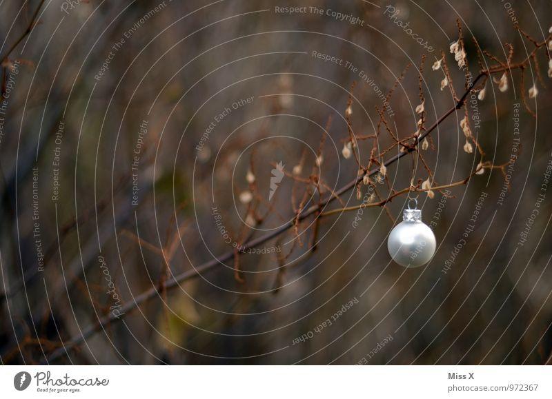 Christbaumkugel Dekoration & Verzierung Weihnachten & Advent Winter Sträucher Kitsch Krimskrams Glas hängen silber Ast Zweig Zweige u. Äste Kugel
