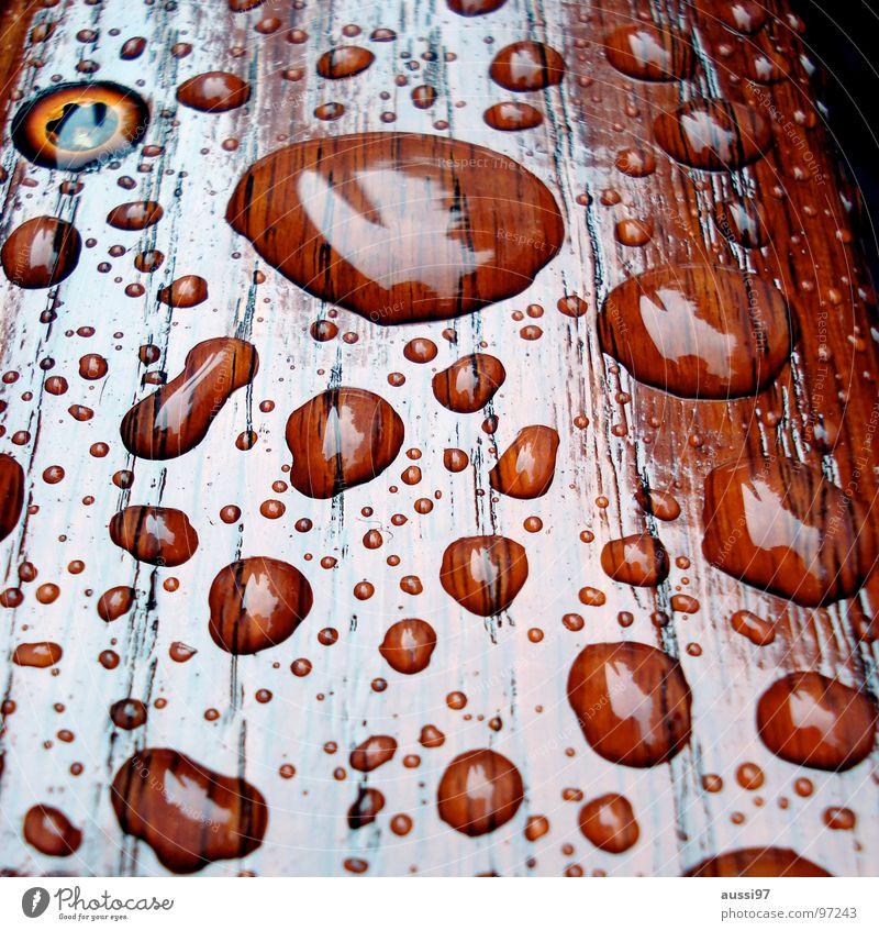 und danach kam die Sonne...II Regen Holz Reflexion & Spiegelung Bruch Licht Lichtbrechung Trauer hydrophob Verzweiflung Herbst Wassertropfen Wetter