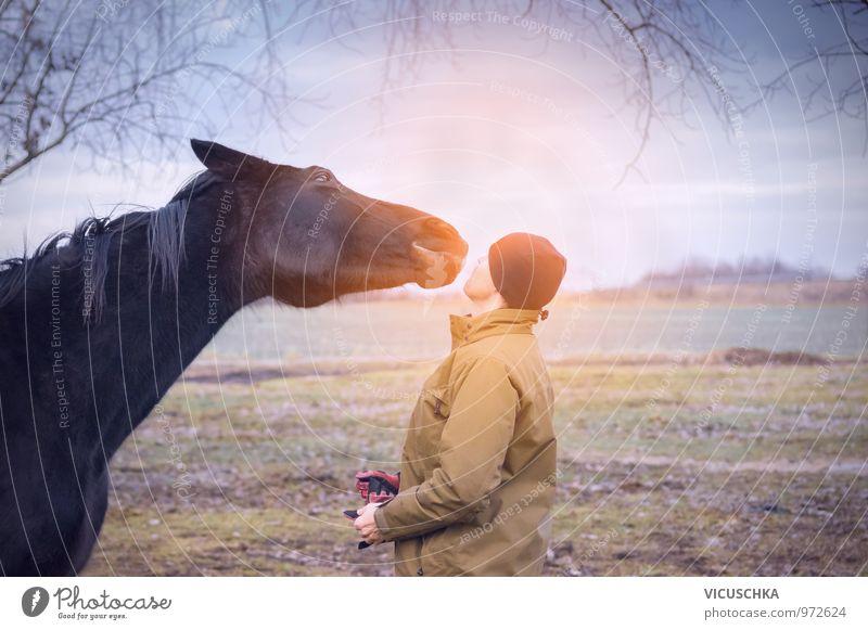 Pferd und Mann grüßen sich in der Morgendämmerung Mensch Himmel Natur Jugendliche Junger Mann Tier Erwachsene Herbst Wiese Frühling Freundschaft maskulin