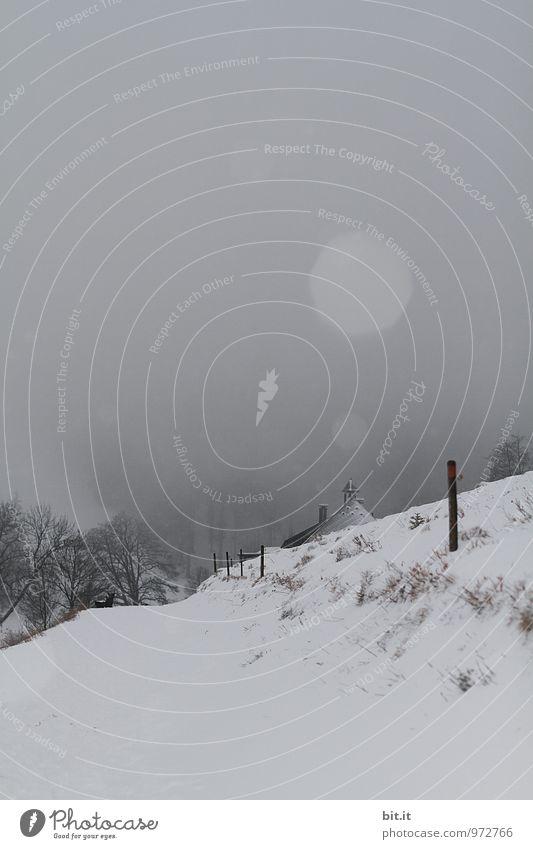 Stockwerk | Haus und Stock Natur Winter Klima schlechtes Wetter Nebel Eis Frost Schnee Schneefall Berge u. Gebirge Endzeitstimmung Winterstimmung Farbfoto