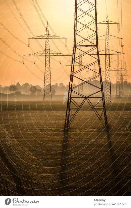 Energieträger Technik & Technologie Energiewirtschaft Elektrizität Strommast Hochspannungsleitung Umwelt Himmel Sonne Sonnenlicht Herbst Nebel Feld groß Stress