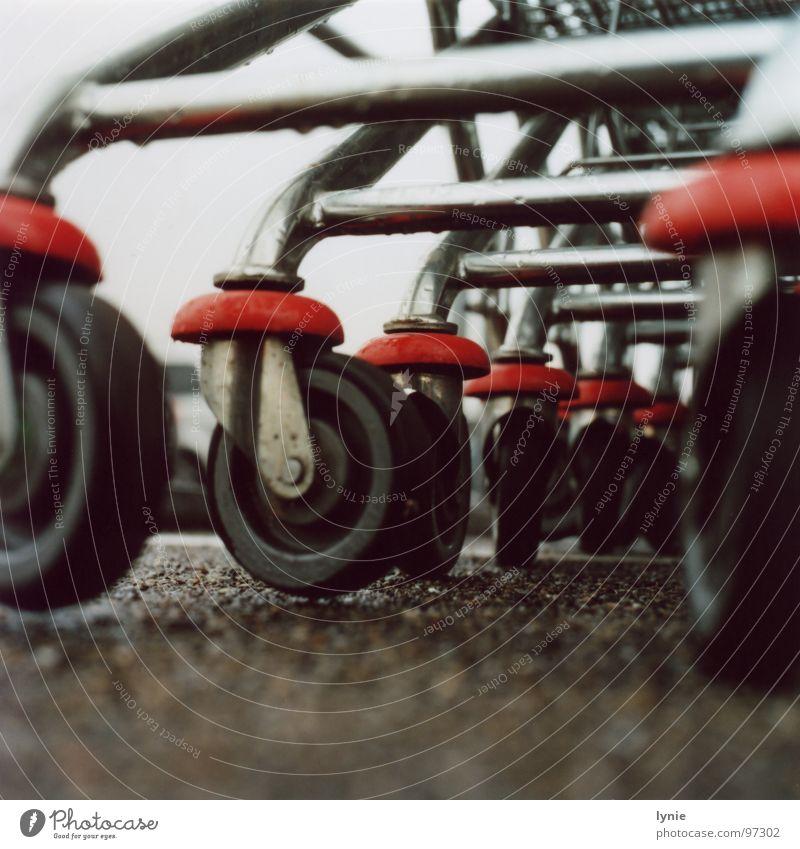 Raeder Einkaufswagen trist Einsamkeit Regen nass Langeweile Rad Metall Wassertropfen Bodenbelag