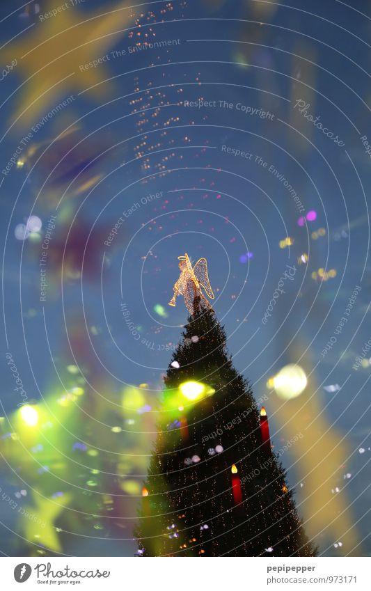 Weihnachtsbaum blau Weihnachten & Advent Baum gelb Gefühle Feste & Feiern gold Zeichen Kerze Engel Kugel Sehenswürdigkeit Ornament