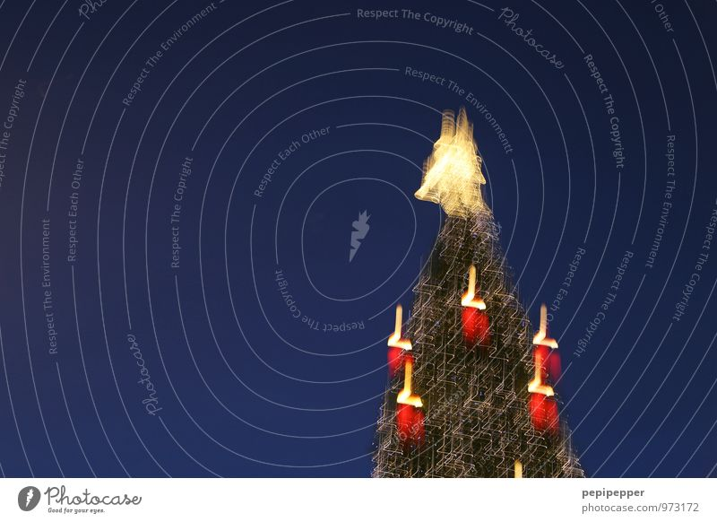 Weihnachtsbaum Feste & Feiern Weihnachten & Advent Baum Sehenswürdigkeit Kerze Zeichen Ornament Engel Kugel blau Weighnachten Farbfoto Außenaufnahme Experiment