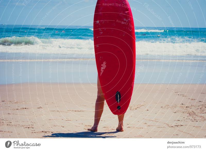 Surfs Up Mensch Kind Jugendliche Wasser Sommer Junge Frau Meer rot Freude Strand Leben feminin Sport Beine 13-18 Jahre fantastisch