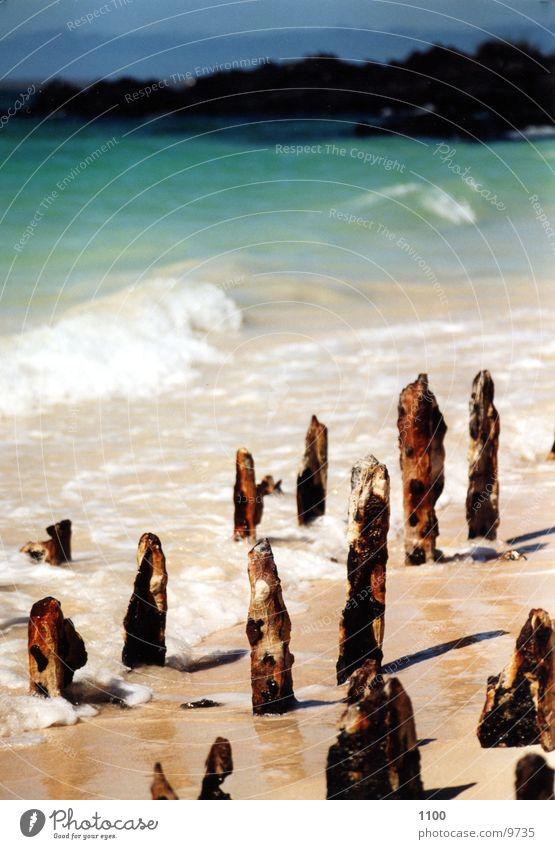 Meer See Wasser Strand Säule verfallen Rost blau Insel Sonne landungsteg alt