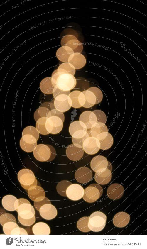 XMAS* Lifestyle elegant Stil harmonisch ruhig Nachtleben Feste & Feiern Weihnachten & Advent Winter Baum Weihnachtsbaum Weihnachtsbeleuchtung glänzend leuchten