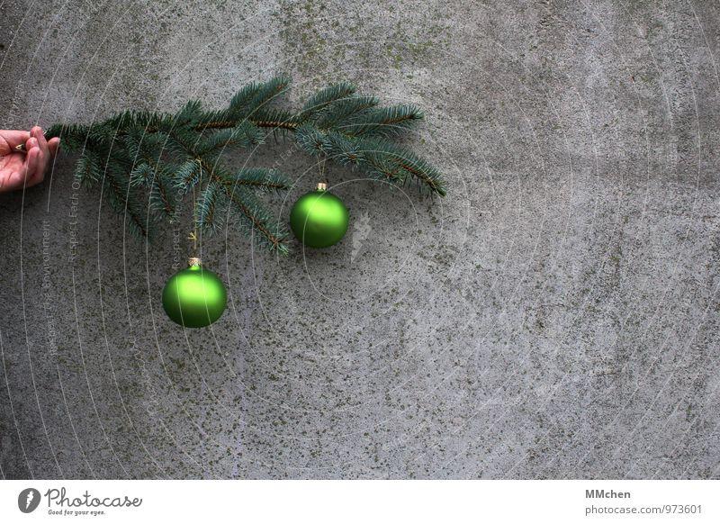 o \ o Dekoration & Verzierung Feste & Feiern Weihnachten & Advent Hand Ast Zweig Mauer Wand Beton festhalten grau grün Vorfreude Liebe ruhig Frieden