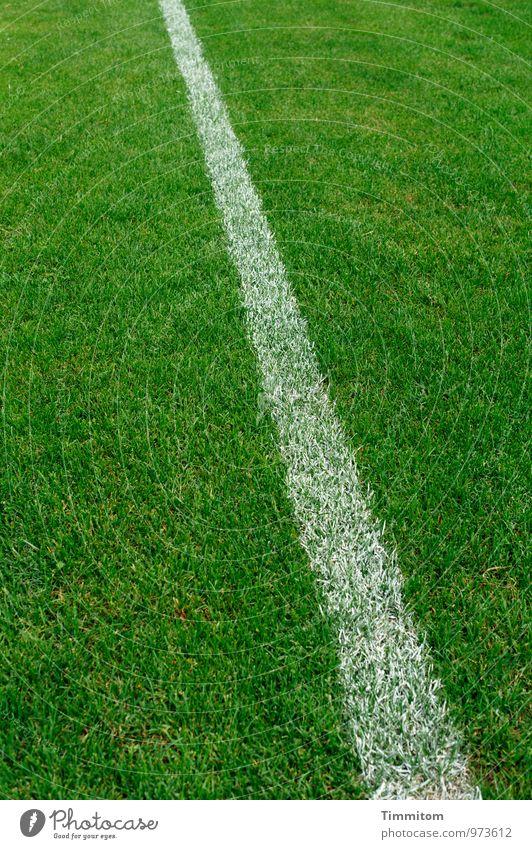 Ganz klar! Sport Sportstätten Fußballplatz Sportrasen Gras Linie ästhetisch einfach natürlich grün weiß Gefühle deutlich Strukturen & Formen Halm Farbe gerade