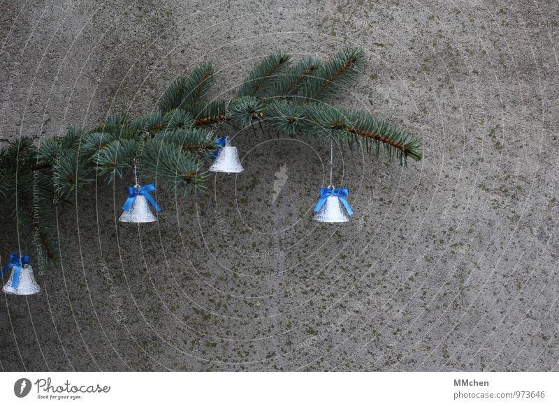 Quattro Weihnachten & Advent Erholung ruhig Gefühle grau Feste & Feiern Stimmung glänzend Zufriedenheit warten Ast Hoffnung Glaube Zweig Meditation hängen