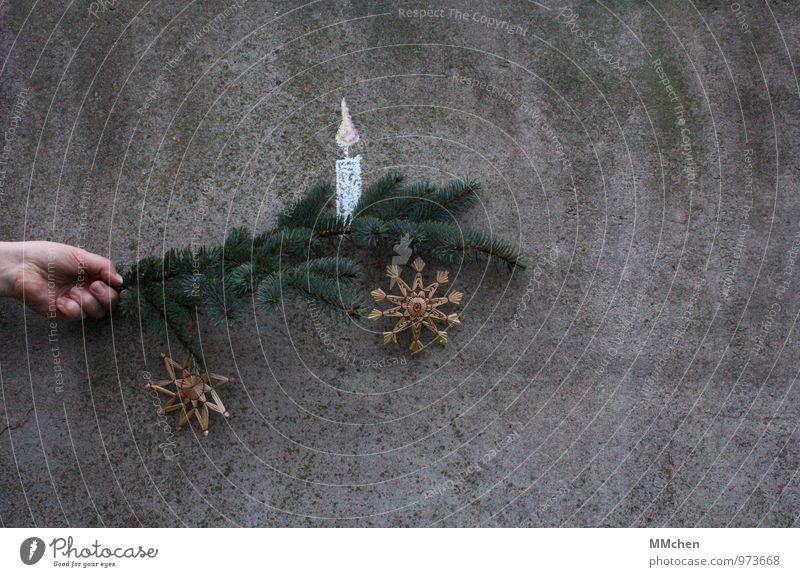 Laterne Weihnachten & Advent grün Hand ruhig Wand Gefühle Mauer grau Feste & Feiern glänzend leuchten Dekoration & Verzierung Ast Beton Warmherzigkeit