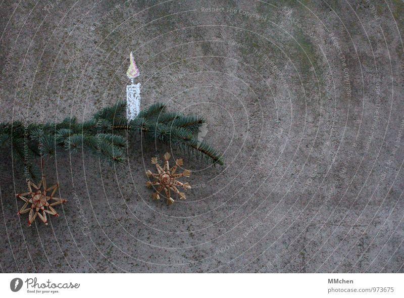Bald geht`s wieder los Weihnachten & Advent Winter Feste & Feiern Zufriedenheit Häusliches Leben leuchten Dekoration & Verzierung warten Lebensfreude Beton Ast