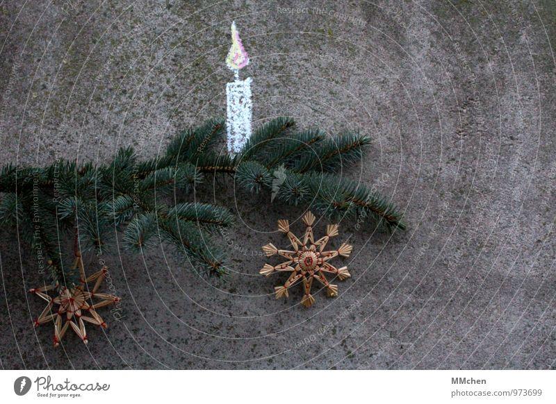 SternStunden Dekoration & Verzierung Feste & Feiern Weihnachten & Advent Pflanze Tannenzweig Zweig Ast Kerze Beton leuchten grau grün Geborgenheit Gelassenheit