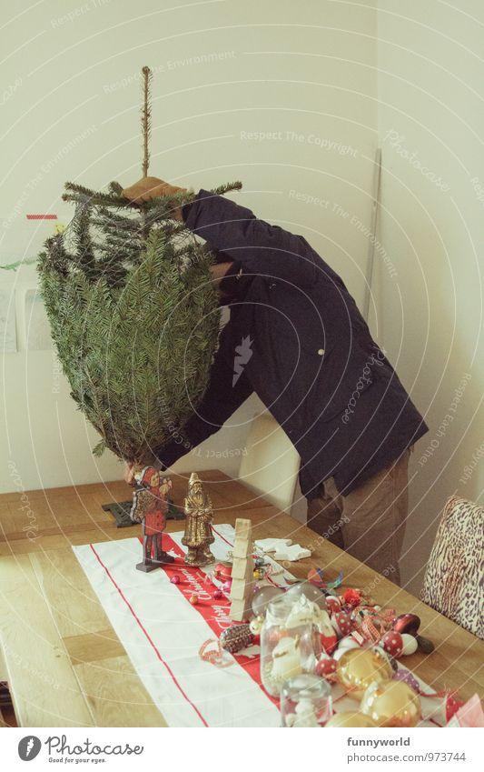 aufgesetzt Weihnachten & Advent Mann Erwachsene 30-45 Jahre Weihnachtsbaum tragen Dezember Vorfreude Christentum Dekoration & Verzierung Tradition Farbfoto