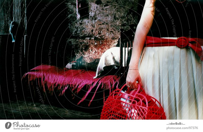 Rotkoerbchen Mensch Frau schön weiß Farbe rot Haus schwarz Erwachsene feminin Stil Mode elegant Arme warten stehen
