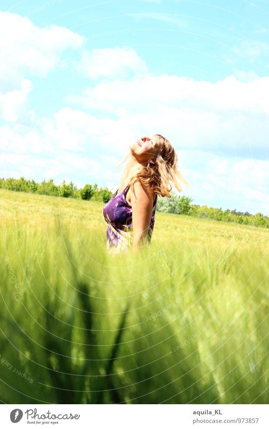 Klingeling im Weizen feminin Junge Frau Jugendliche 1 Mensch 18-30 Jahre Erwachsene Himmel Sträucher Wiese Feld atmen Blühend genießen leuchten schön Freude