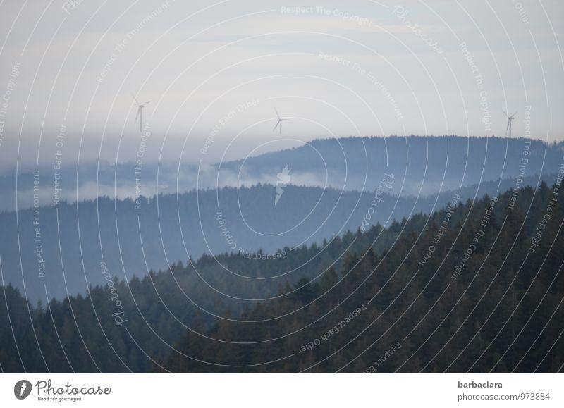 Schwarzwaldhöhe Windkraftanlage Umwelt Natur Landschaft Himmel Herbst Winter Nebel Wald Hügel Berge u. Gebirge frei hell blau Stimmung Erholung Horizont ruhig