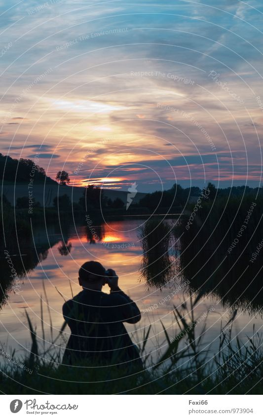 Abends am Teich maskulin Mann Erwachsene 1 Mensch 45-60 Jahre Landschaft Pflanze Tier Wasser Himmel Wolken Gewitterwolken Horizont Sonnenaufgang Sonnenuntergang