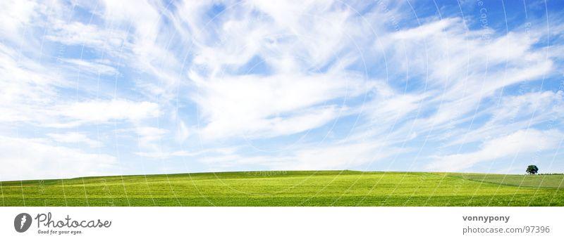 Biofrühstück II Wolken Wiese Unendlichkeit Baum grün weiß Einsamkeit Ferne Horizont Sommer Frühling Himmel blau Bioprodukte Natur bad rappenau Landschaft Wind