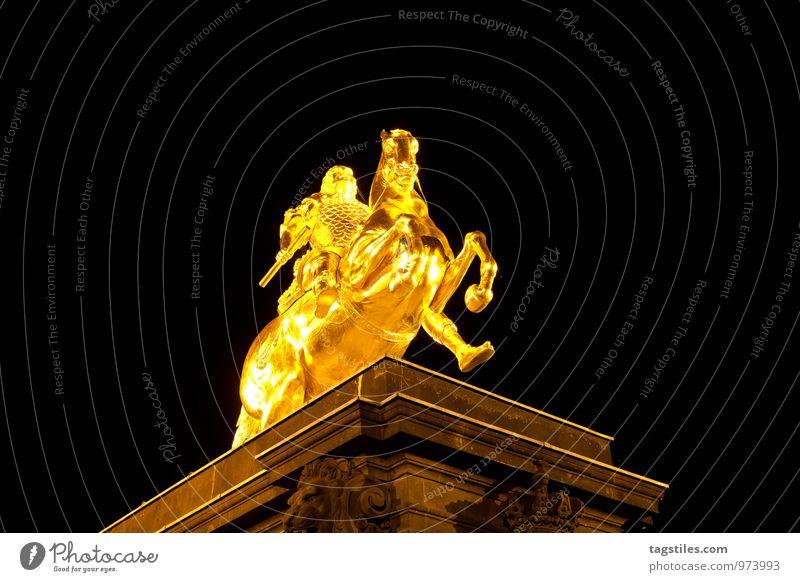 GOLDENER REITER Dresden Sachsen Deutschland gold Reiter goldene Reiter Pferd Denkmal Nacht Abend dunkel Ferien & Urlaub & Reisen Reisefotografie Idylle Freiheit