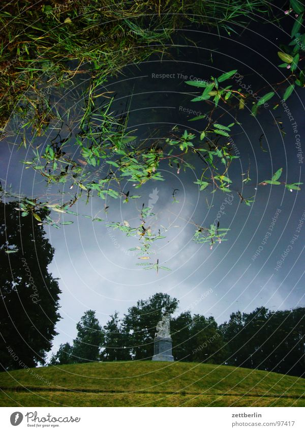 Schloss Neuhardenberg Park Schlosspark Garten Landschaftsformen Teich Gewässer Statue Skulptur Wasserpflanze Seerosen Reflexion & Spiegelung Freizeit & Hobby