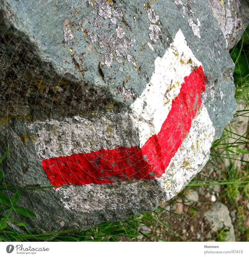 Wegweiser weiß rot Blume Wiese Berge u. Gebirge Gras Stein Felsen Schilder & Markierungen wandern Hinweisschild Alpen Fluss Hügel Fußweg Schweiz