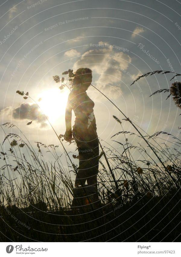 Aus Maulwurfssicht Sommerabend Frau Silhouette Gras Wolken schwarz wehen groß Froschperspektive Vogelperspektive Mensch Sonne Selbstportrait Abend wiese himmel