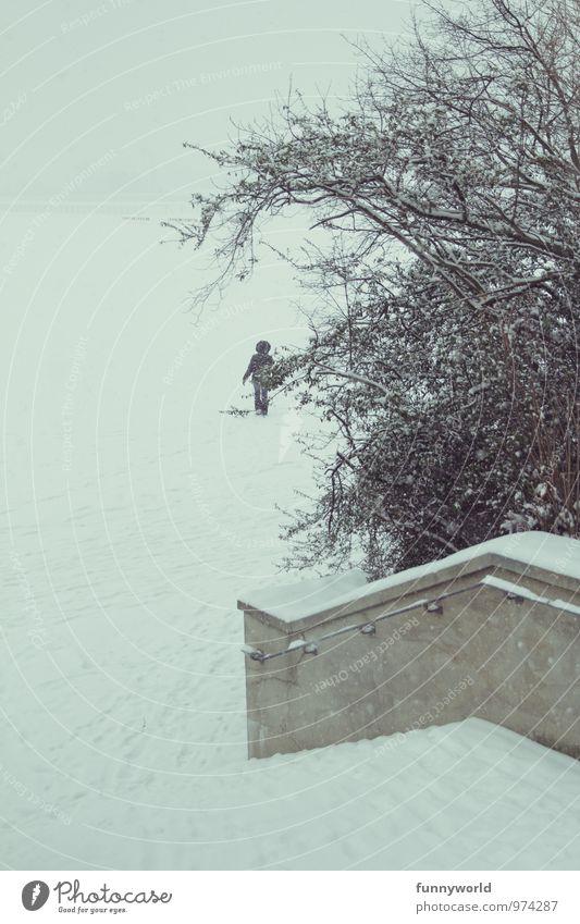 going into winterworld Winter Schnee Nebel Eis Frost Park gehen Ferne klein trist weiß Hoffnung Sehnsucht Gedeckte Farben Außenaufnahme Textfreiraum links