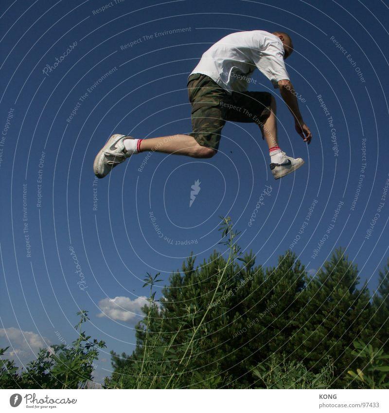 invisible obstacles Himmel Mann Pflanze Freude Wald springen Vogel fliegen hoch Luftverkehr Barriere Dynamik Abheben Turnschuh Botanik himmelblau